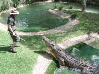 Big ass crocodile!