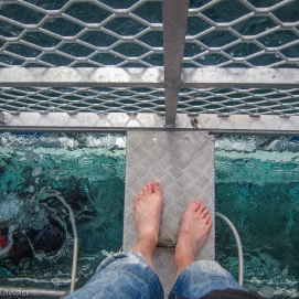 It was cold, but my feet where colder!