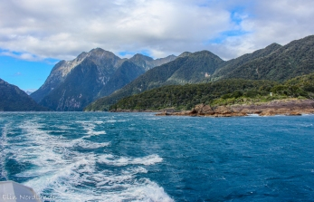 Turquoise waters of Milford Sound.
